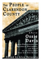 Clarendon County book cover